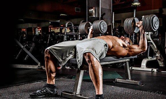 программа тренировок для грудных мышц с гантелями