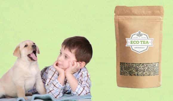 Eco Tea эффективность