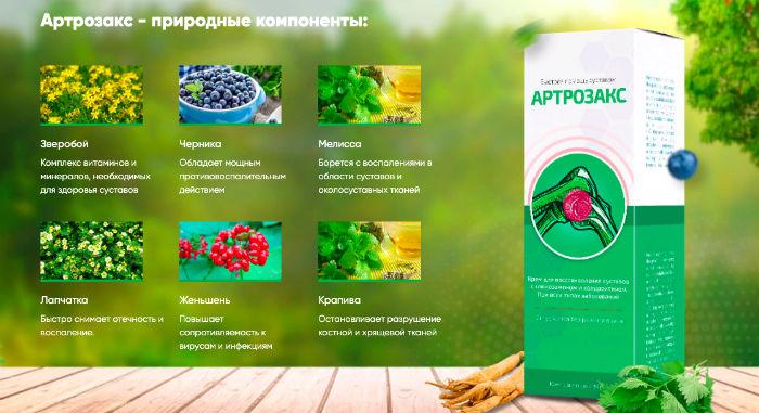 Артрозакс состав крема